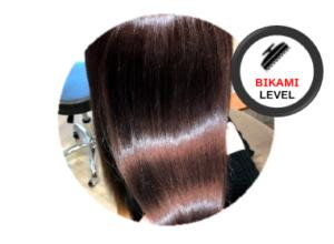 髪質レベルアップに特化